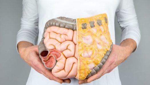Mikroflora jelitowa – jak odbudować?